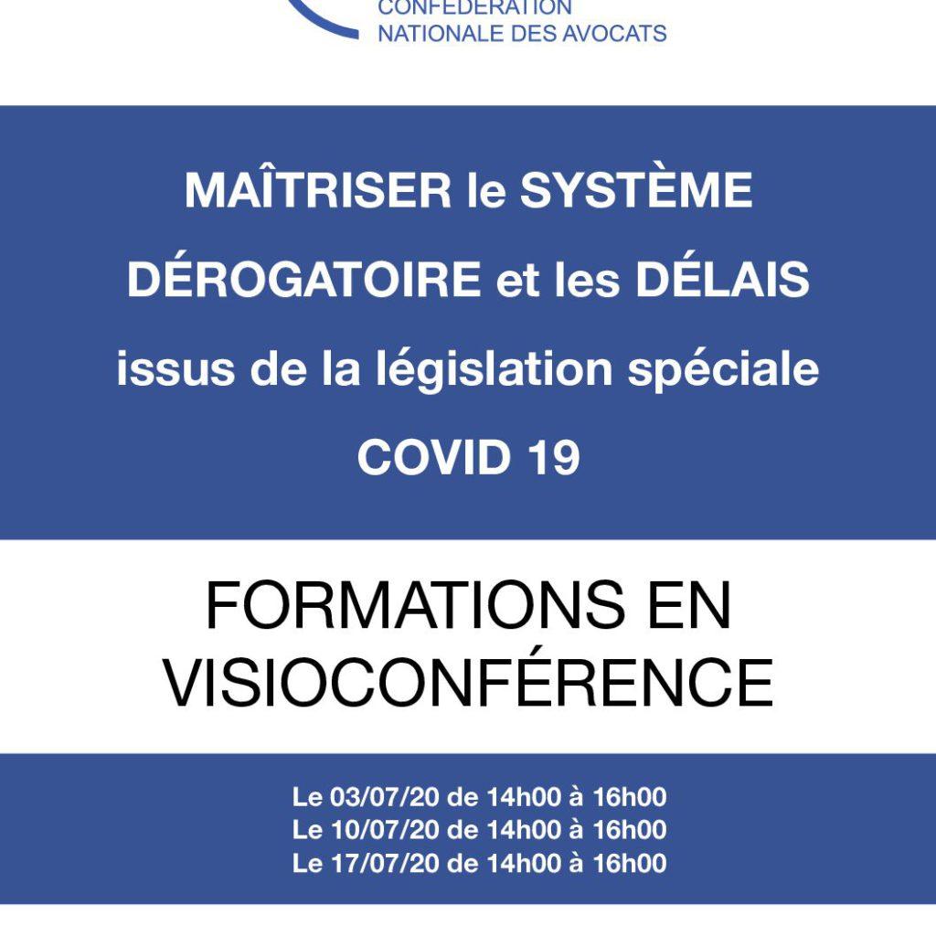"""Second round, ce vendredi 10 juillet à 14 heures, du cycle spécial législation """"Covid 19"""", de visio-formation proposé par la CNA"""